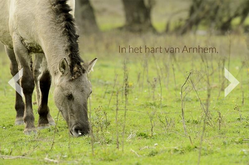 Natuur in Meinerswijk